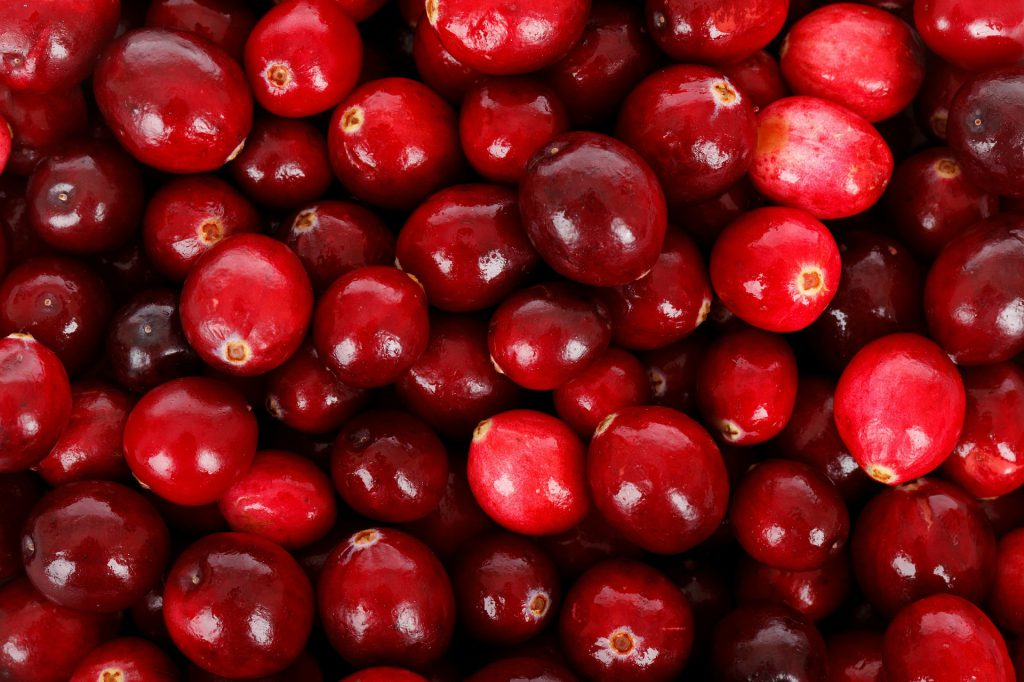 Raw cranberries, the base for cranberry sauce