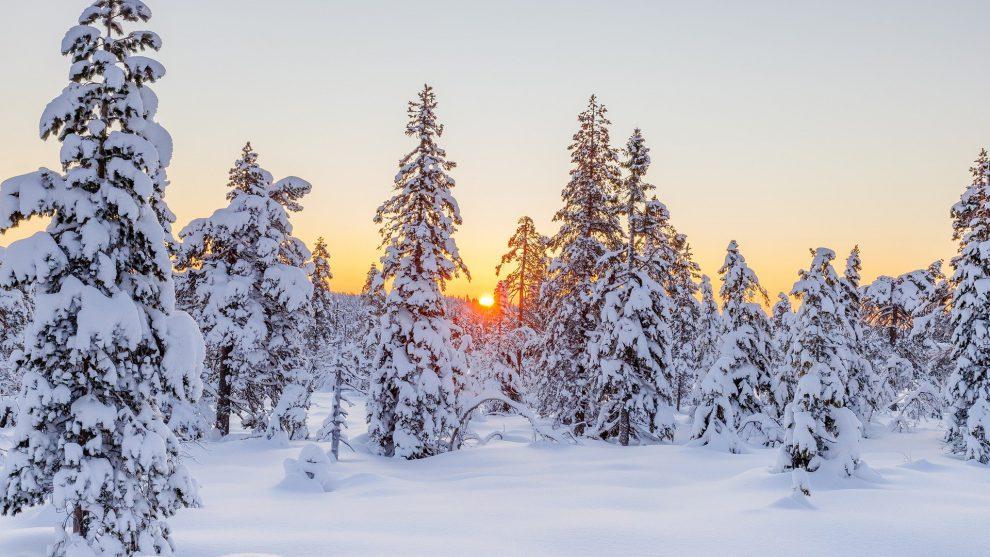 Pre-Christmas History – Ancient Festivals