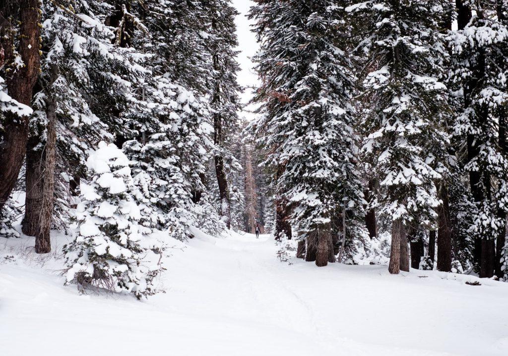 Winter scene similar to Wham's Last Christmas